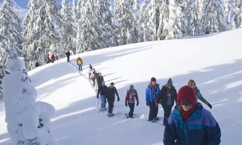 snowshoe-walk-1251418_1280 Cropped